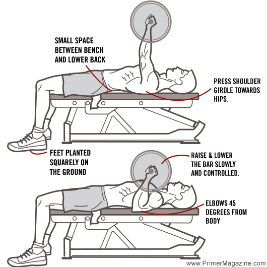 8Exercises_bench-press