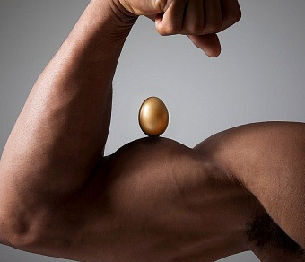 muscle-building-eggs