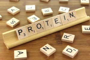 abs-protein