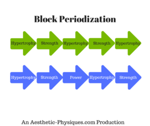 building-lean-muscle-block-periodization