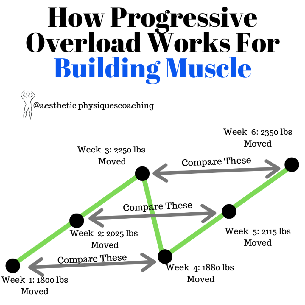 progressive-overload-works