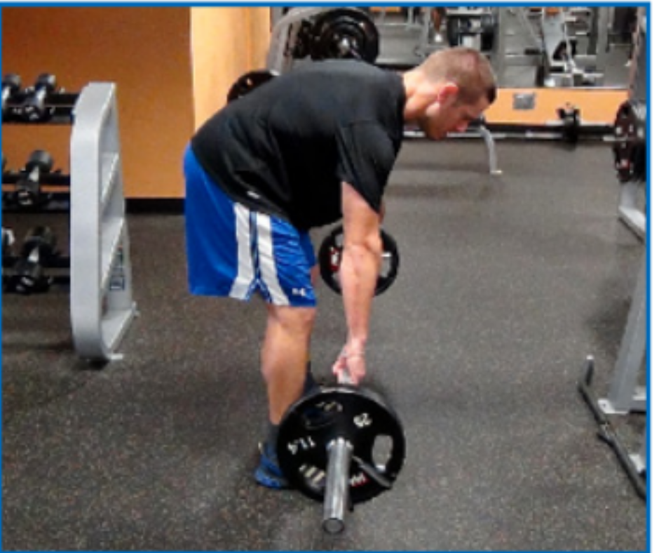 bent-over-row-rounded-back