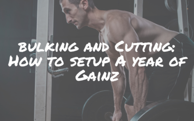 Bulking and Cutting: How to Setup a Year of Gainz